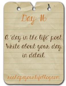day-16_thumb