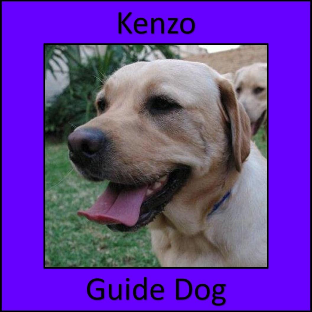 widget_Kenzo